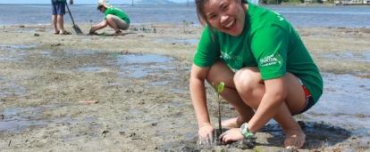A woman plants mangroves as part of our volunteer abroad opportunities.